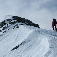 El Consejo de Ministros aprueba la propuesta para la declaración del Parque Nacional Sierra de las Nieves
