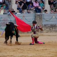 Vicente Soler sorprendió gratamente a los aficionados.