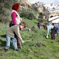 La Diputación convoca los premios 'Málaga Viva' para reconocer buenas prácticas en la lucha contra el cambio climático