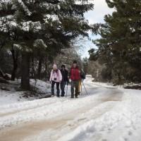 Presentan cien alegaciones y sugerencias al proyecto de declaración de la Sierra de las Nieves como Parque Nacional