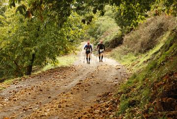 Paso de los corredores por los bosques de castaños de Cartajima.