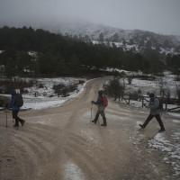 La nieve cubre la Sierra de las Nieves
