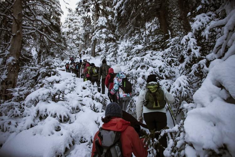 La Sierra de las Nieves recibe miles de visitantes