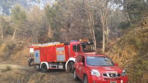 Dotaciones del Consorcio Provincial de Bomberos durante el incendio.