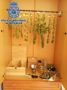 El secadero de las plantas también estaba en otro armario.