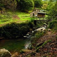 La Sauceda cobra vida y deja de ser un pueblo fantasma