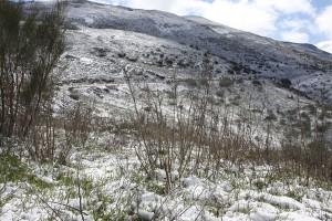 Las sierras se han cubierto de una capa blanquecina