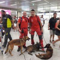 Dos bomberos y tres perros del Parque de Ronda viajan a Italia tras el terremoto para rescatar a personas atrapadas bajo los escombros