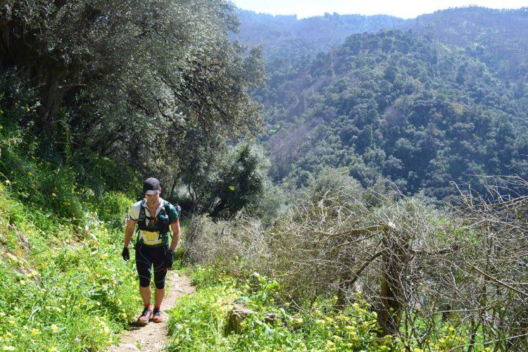 Un total de 360 deportistas corrieron el II Trail de Jubrique que discurrió por parajes del Genal
