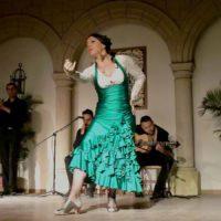 Arte y pasión en la quinta edición del XXIII Concurso Nacional de Cante y Baile Aniya la Gitana