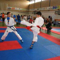 Un total de 25 karatecas del Club Bushido Ronda participarán este sábado en el Campeonato de España de Kárate Wado
