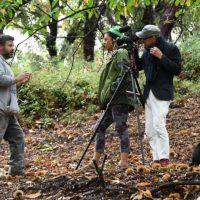La televisión pública británica BBC desplaza un equipo al Valle del Genal para elaborar un reportaje sobre la castaña