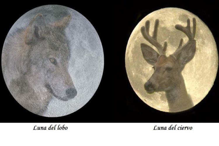 Astronomía: Los nombres de las lunas a lo largo del año