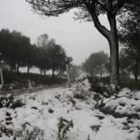La borrasca 'Ana' deja los primeros mantos blancos en las zonas más altas de la Sierra de Las Nieves