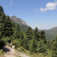 ¿Qué pasa en el Parque Natural Sierra de Grazalema?