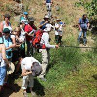 La Diputación organiza un taller gratuito sobre mariposas de la Gran Senda en Jimera de Líbar
