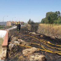 Los bomberos extinguen un incendio forestal que se ha declarado esta tarde en 'La Trinchera' de El Fuerte