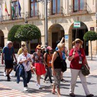 El Ayuntamiento realizará controles aleatorios para acabar con el intrusismo entre los guías turísticos