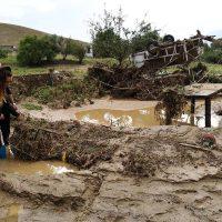 Catástrofe en La Indiana: casas inundadas, personas mayores incomunicadas, decenas de caballos muertos o desaparecidos y coches arrastrados por la corriente del Guadiaro