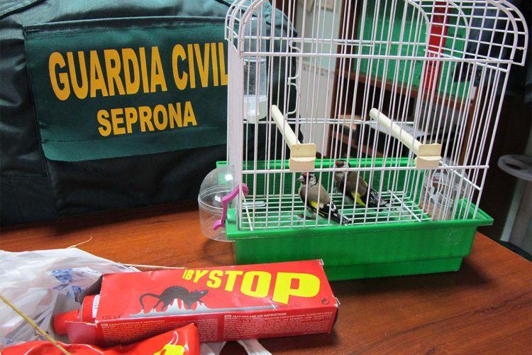 La Guardia Civil de Ronda detiene a tres personas por la captura con artes prohibidas de aves