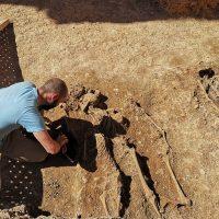 Localizan trece enterramientos de la época andalusí en un inmueble en obras del barrio de San Francisco