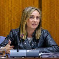 """La consejera de Fomento afirma que la construcción de la autovía de Ronda es un objetivo """"prioritario"""" para el Gobierno andaluz"""