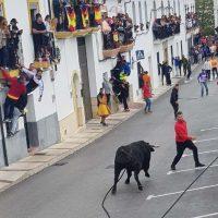 Más de 12.000 personas llegan a Gaucín para correr el Toro de Cuerda del Domingo de Resurrección