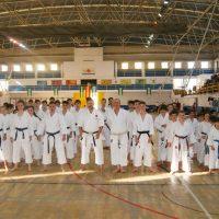Los karatecas del Club Bushido lograron once medallas en el Trofeo Promesas de Málaga
