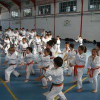 El Club de Kárate Bushido cierra la temporada con su gala deportiva en la que han participado más de cien alumnos