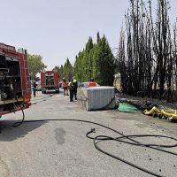 Un incendio calcina veinte cipreses, numerosos contenedores y afecta a un vehículo estacionado