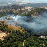Efectivos del Plan Infoca trabajan esta tarde para extinguir un incendio declarado en unos parajes de Gaucín