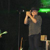 El homenaje a los 80 llenó de público el último concierto del 'Pinsapo Sound'