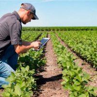 Los jóvenes del Guadiaro recibirán formación sobre cultivos para recuperar espacios agrícolas y asentar a la población