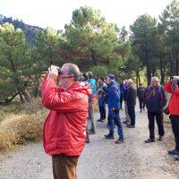 Jornada de sensibilización ambiental sobre aves carroñeras y ganadería en Parauta