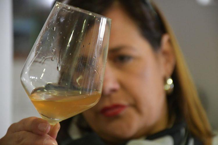 Centenares de personas disfrutaron con la XV edición de la Cata del Vino de Cartajima