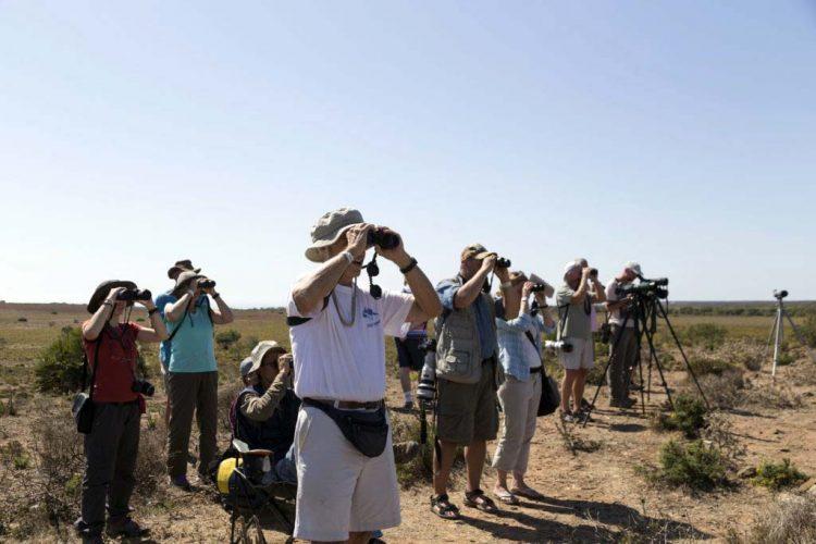La Diputación de Málaga edita dos nuevas publicaciones para promocionar el avistamiento de aves en la Serranía