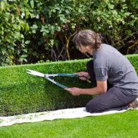 La Concejalía de Igualdad presenta un curso dirigido a mujeres desempleadas para mantenimiento de jardines