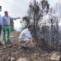 La Junta pedirá al Gobierno de España la declaración de zona catastrófica para Sierra Bermeja