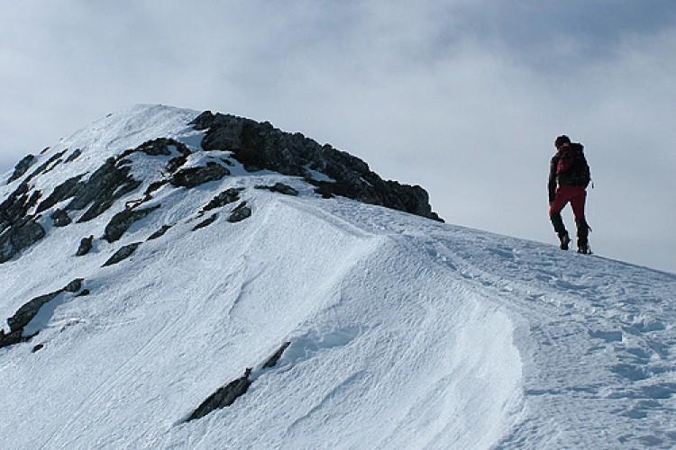 El Consejo de Ministros aprueba el proyecto de Ley para la declaración del Parque Nacional Sierra de las Nieves