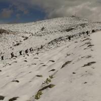 Decenas de personas subieron a disfrutar de la nieve.