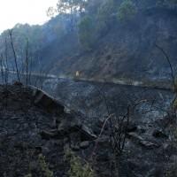 El fuego afectó a una superficie de arbolado y matorral.