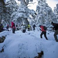 Se cumplen 25 años de la declaración de la Sierra de las Nieves como Reserva de la Biosfera,