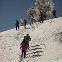 Senderistas paseando por los parajes de la Sierra de las Nieves.