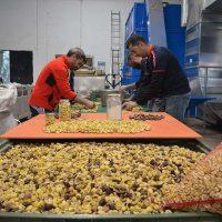 La Diputación plantea a la Junta facilitar el desarrollo de proyectos industriales en la Serranía de Ronda