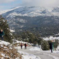 Finalizan los trámites previos para la aprobación en las Cortes Generales del futuro Parque Nacional Sierra de las Nieves