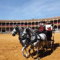Los enganches se desarrollarán este año el día 7 de septiembre, dentro de la Feria de Ronda.