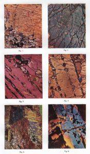 Minertales encontrados por el geólogo en la Serranía.