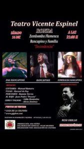 Zambomba flamenca.