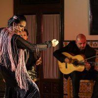 El grupo Ronda Flamenca regresa al Casino su espectáculo 'Raíces'
