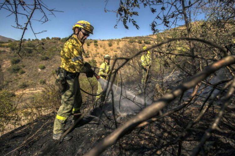 El incendio que se declaró el domingo en Yunquera calcinó 20 hectáreas de masa forestal